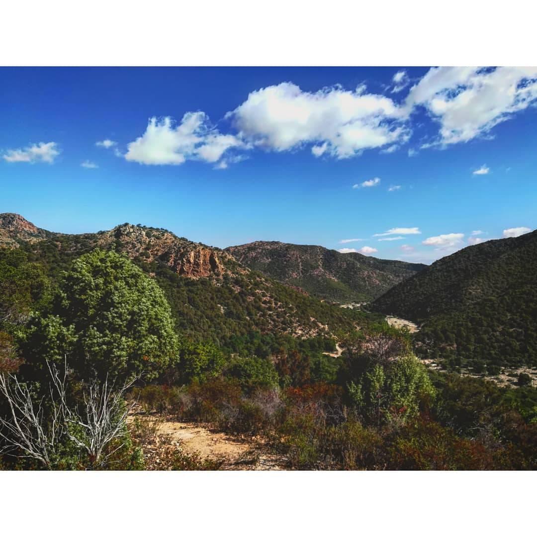 Monte Arcosu_6