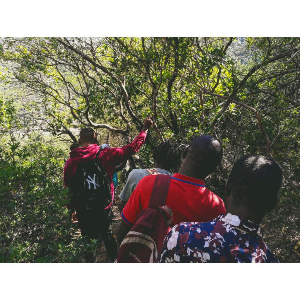 Monte Arcosu_3